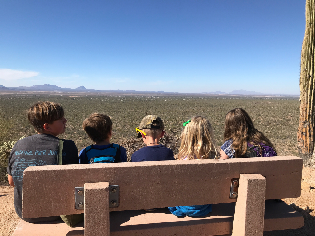 Spring in the desert. Viewing the Desert from Valley View Trail
